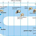© Encyclopædia Britannica, Inc.